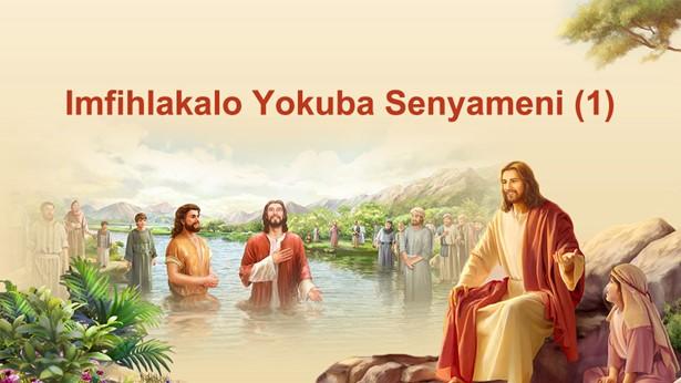 Imfihlakalo Yokuba Senyameni (1)